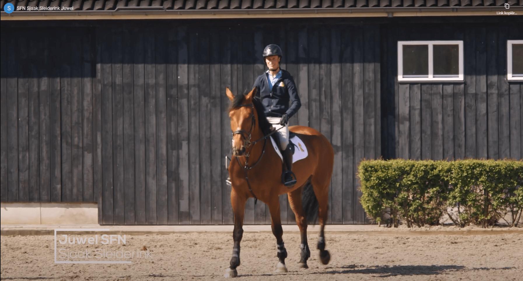 SFN Springpaardenfonds Nederland